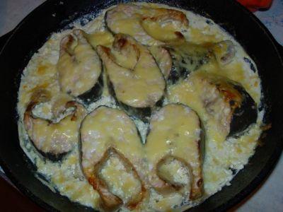 Рецепты рыбной консервы для приготовления в скороварке