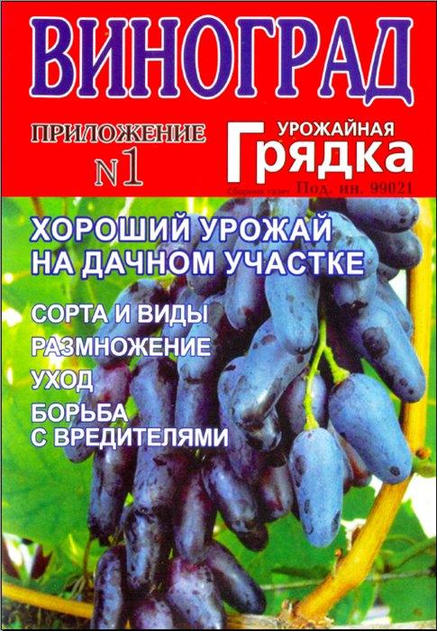 Урожайная овощная запеканка