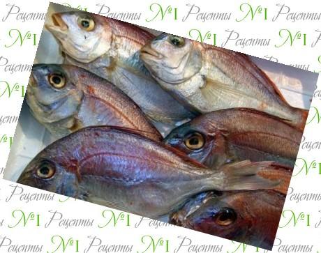 Рыба на решетке рецепты вкусные