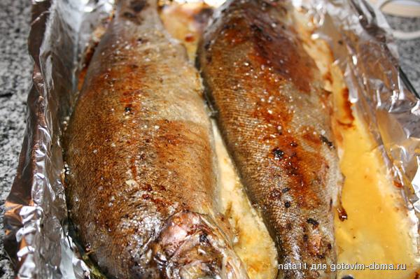 Рецепт пошаговый форели в духовке