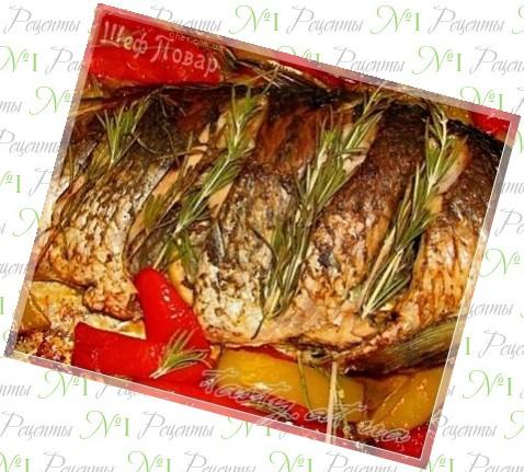 Куриное филе с сыром в сметане в духовке рецепт с фото пошагово в