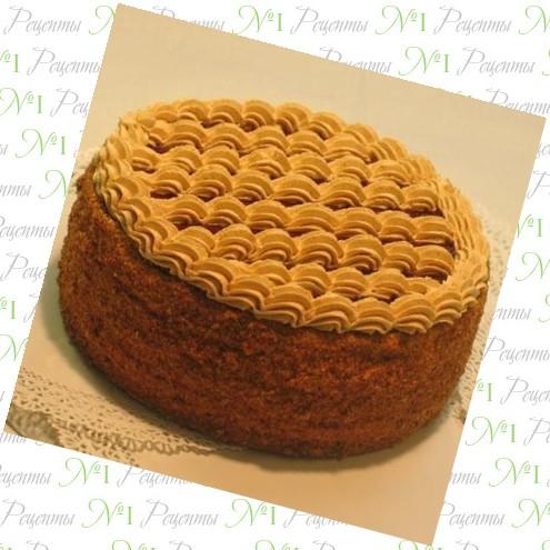 рецепт торта с использованием сметаны